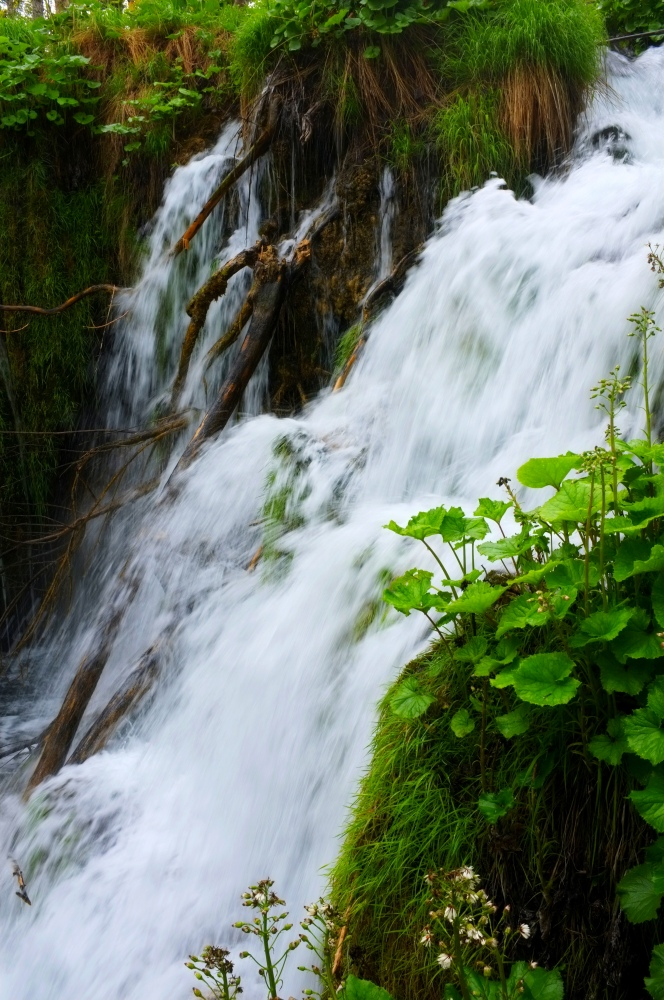 Plitvice Lakes National Park - The Watery Eden (2/6)