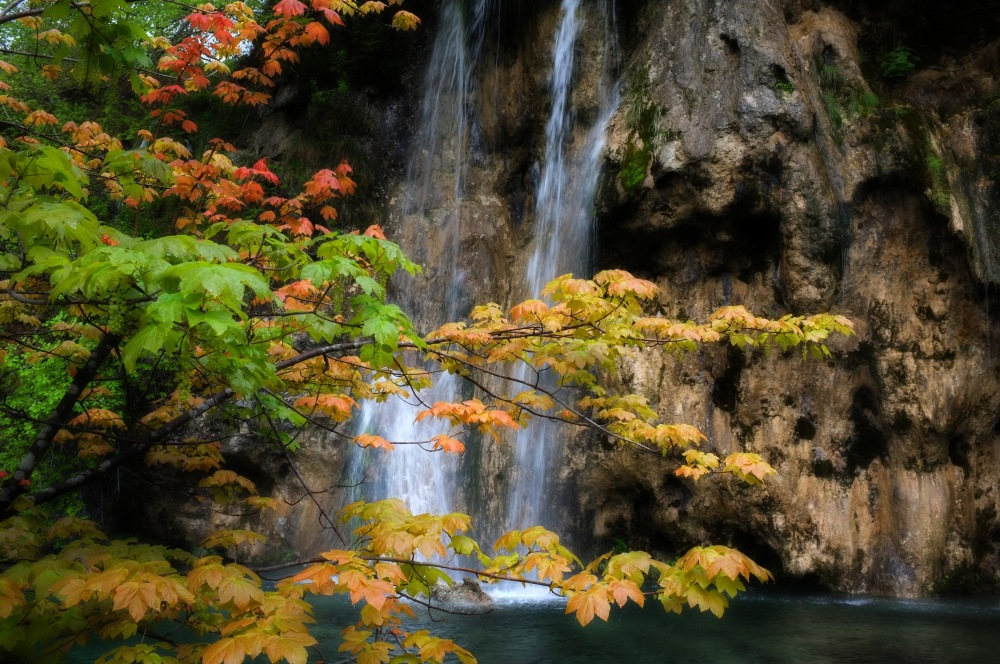 Plitvice Lakes National Park - The Watery Eden (4/6)