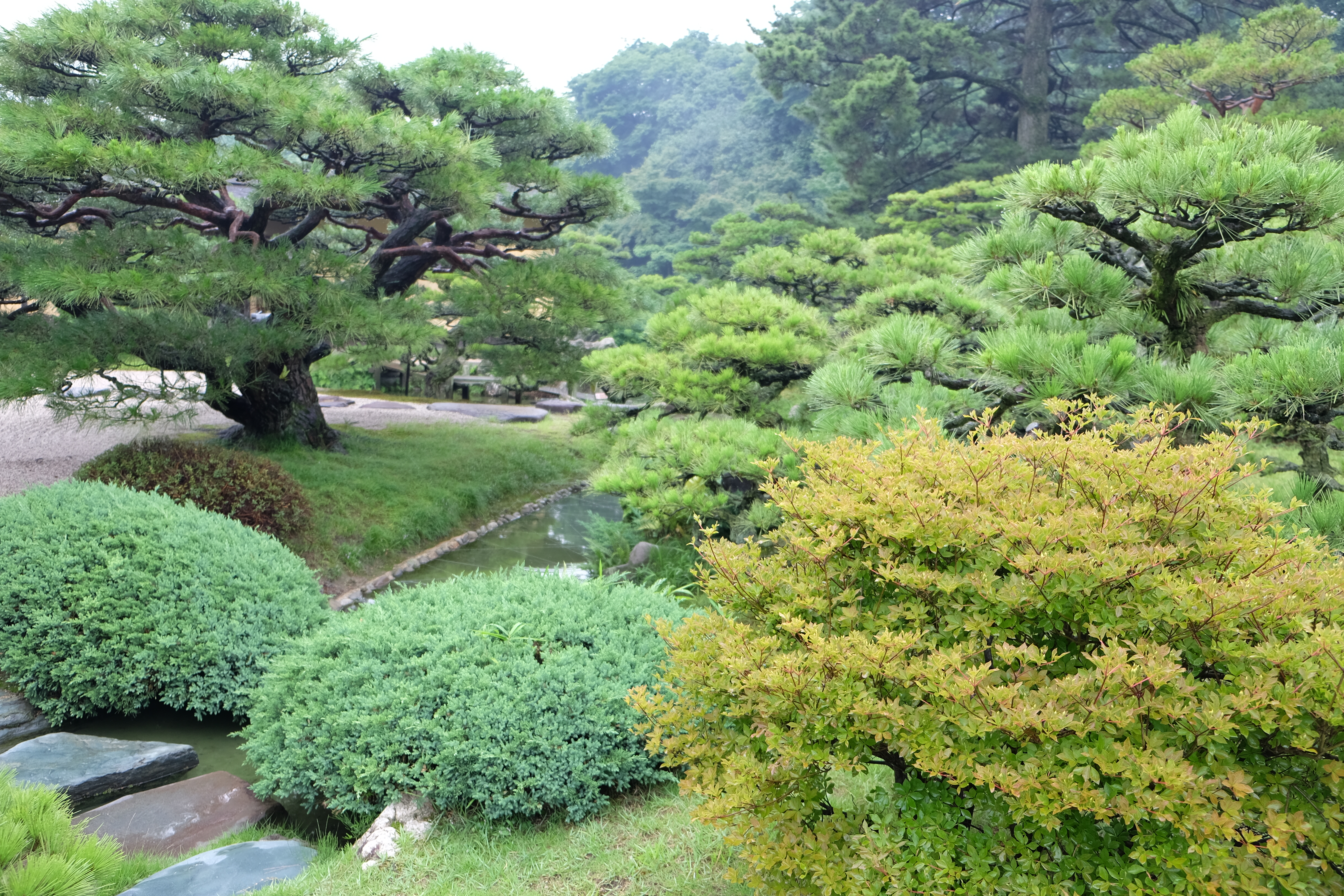 the significance and role of japanese gardens The art of japanese gardens have been believed to be one of the most important  parts of  most of them are opened to the public now and play a role in city parks   they refer to the zen philosophy and usually try to evoke a deeper meaning.